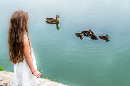 little girl holding a flower in her hand and looking at the ducks in the lake