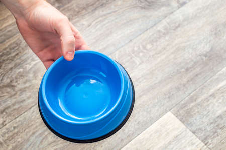 owner is holding an empty food bowl. Concept of food for a dog and a cat Banco de Imagens