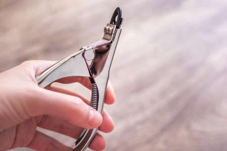 Man's hand holds a nail clipper. Pet care concept Banco de Imagens