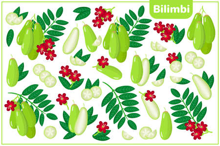 Set of vector cartoon illustrations with whole, half, cut slice Bilimbi exotic fruits, flowers and leaves isolated on white background