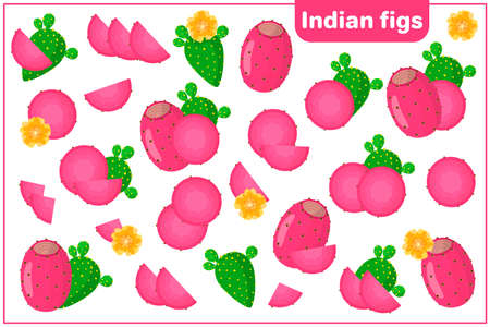 Set of vector cartoon illustrations with whole, half, cut slice Indian Figs exotic fruits, flowers and leaves isolated on white background
