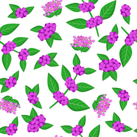 Vector cartoon seamless pattern with Callicarpa or beautyberry exotic fruits, flowers and leafs on white background for web, print, cloth texture or wallpaper