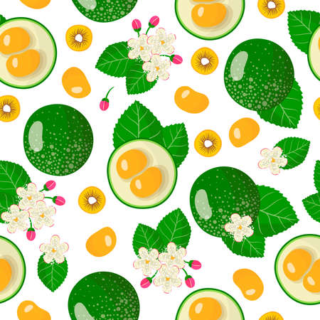 Vector cartoon seamless pattern with Caryocar brasiliense or pequi exotic fruits, flowers and leafs on white background for web, print, cloth texture or wallpaper Иллюстрация