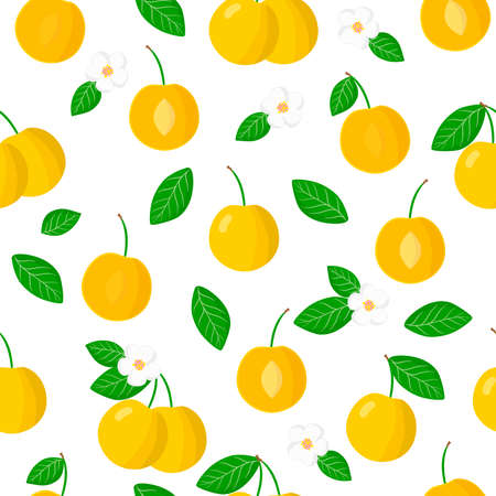 Vector cartoon seamless pattern with Prunus cerasifera or cherry plum exotic fruits, flowers and leafs on white background for web, print, cloth texture or wallpaper