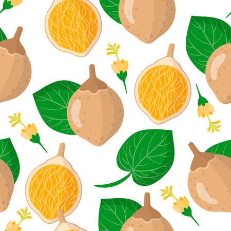 Vector cartoon seamless pattern with Matisia cordata or Chupa-chupa exotic fruits, flowers and leafs on white background for web, print, cloth texture or wallpaper