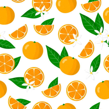 Vector cartoon seamless pattern with Citrus microcarpa or Citrofortunella exotic fruits, flowers and leafs on white background for web, print, cloth texture or wallpaper