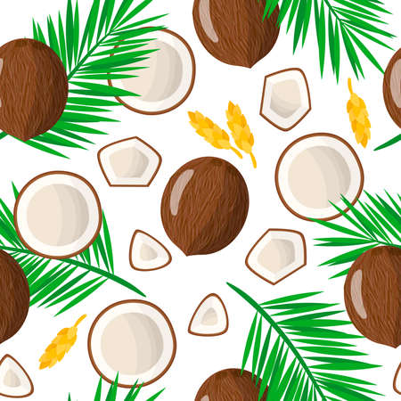 Vector cartoon seamless pattern with Cocos nucifera or Coconut exotic fruits, flowers and leafs on white background for web, print, cloth texture or wallpaper