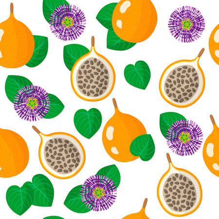 Vector cartoon seamless pattern with Passiflora ligularis or sweet granadilla exotic fruits, flowers and leafs on white background for web, print, cloth texture or wallpaper