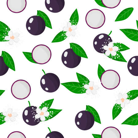 Vector cartoon seamless pattern with Myrciaria caulifloria or jaboticaba exotic fruits, flowers and leafs on white background for web, print, cloth texture or wallpaper Иллюстрация