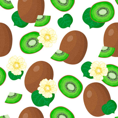 Vector cartoon seamless pattern with Actinidia chinensis or Kiwifruit exotic fruits, flowers and leafs on white background for web, print, cloth texture or wallpaper