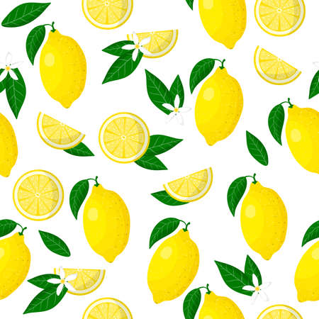Vector cartoon seamless pattern with Citrus limon or Lemon exotic fruits, flowers and leafs on white background for web, print, cloth texture or wallpaper