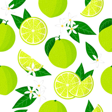 Vector cartoon seamless pattern with Citrus limetta or sweet lime exotic fruits, flowers and leafs on white background for web, print, cloth texture or wallpaper