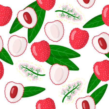 Vector cartoon seamless pattern with Litchi chinensis or Lychee chinese exotic fruits, flowers and leafs on white background for web, print, cloth texture or wallpaper Иллюстрация