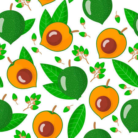 Vector cartoon seamless pattern with Pouteria lucuma exotic fruits, flowers and leafs on white background for web, print, cloth texture or wallpaper Иллюстрация