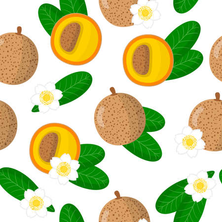 Vector cartoon seamless pattern with Mammea americana or South American apricot exotic fruits, flowers and leafs on white background for web, print, cloth texture or wallpaper
