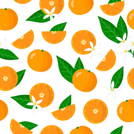 Vector cartoon seamless pattern with Citrus reticulata or Mandarin orange exotic fruits, flowers and leafs on white background for web, print, cloth texture or wallpaper