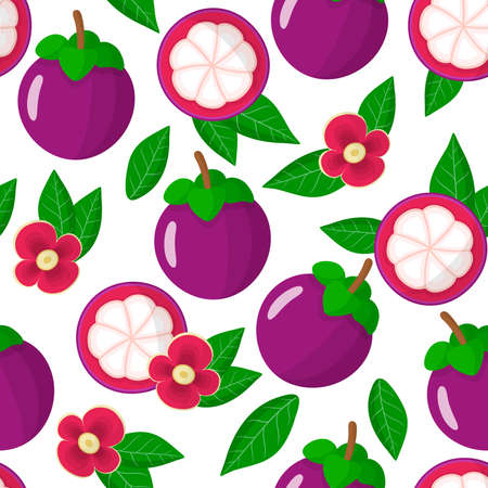 Vector cartoon seamless pattern with Garcinia mangostana or purple Mangosteen exotic fruits, flowers and leafs on white background for web, print, cloth texture or wallpaper