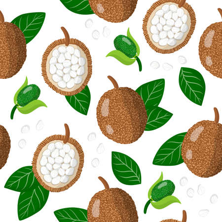 Vector cartoon seamless pattern with Artocarpus odoratissimus or marang exotic fruits, flowers and leafs on white background for web, print, cloth texture or wallpaper