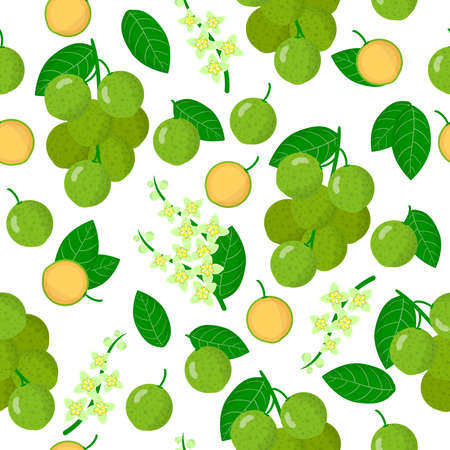 Vector cartoon seamless pattern with Melicoccus bijugatus or Mamonchillo exotic fruits, flowers and leafs on white background for web, print, cloth texture or wallpaper Vector Illustration