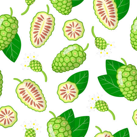 Vector cartoon seamless pattern with Morinda citrifolia or noni exotic fruits, flowers and leafs on white background for web, print, cloth texture or wallpaper