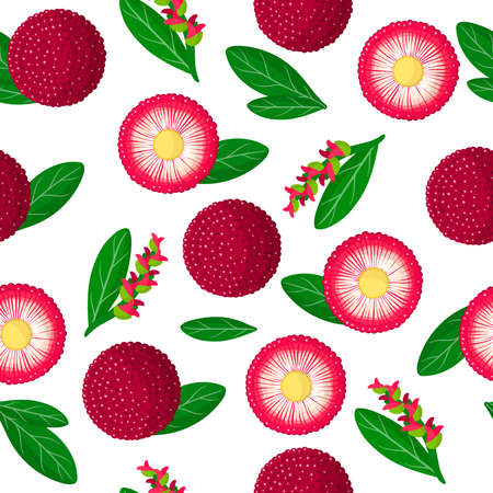 Vector cartoon seamless pattern with Myrica rubra or yangmei exotic fruits, flowers and leafs on white background for web, print, cloth texture or wallpaper