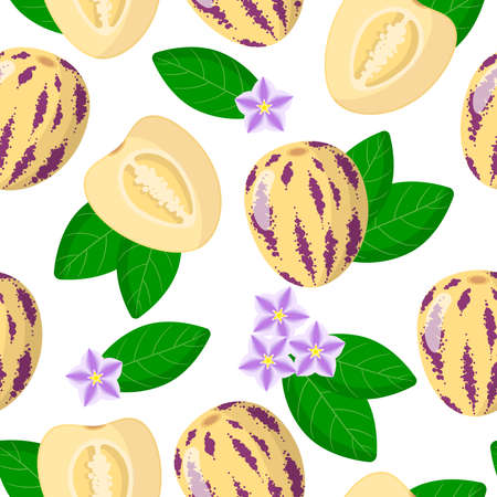 Vector cartoon seamless pattern with Solanum muricatum or Pepino exotic fruits, flowers and leafs on white background for web, print, cloth texture or wallpaper Иллюстрация