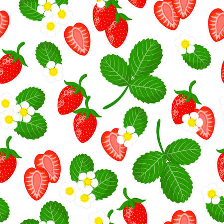 Vector cartoon seamless pattern with Fragaria vesca or wild strawberry exotic fruits, flowers and leafs on white background for web, print, cloth texture or wallpaper