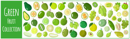 Set of vector cartoon illustrations with exotic green fruits isolated on white background. Collection of green fruits of the world.