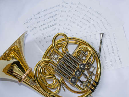 French horn on white screen