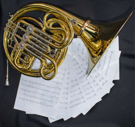 French horn music instrument