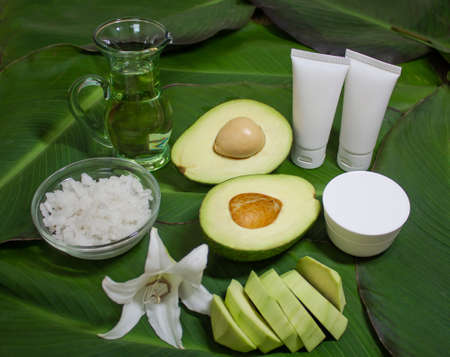Avokado skincare treatment Фото со стока