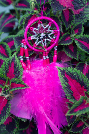 Dreamcatcher in the herb leaves
