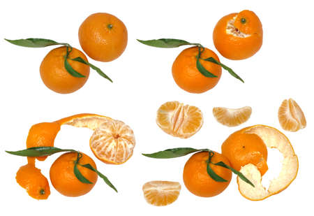 existence: four stages of the existence of mandarin