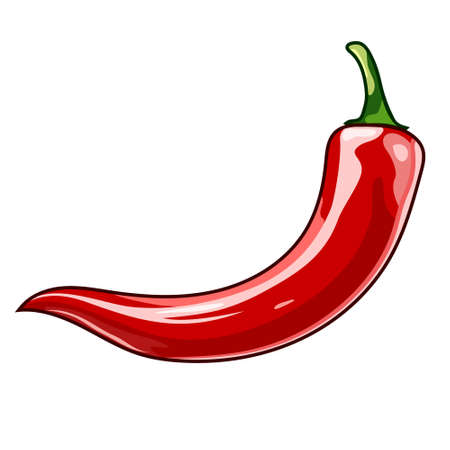 Red chili pepper vector flat design