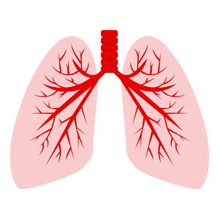 Lungs icon on a white background.