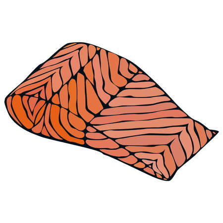 Picture of red fish fillet on a white background.