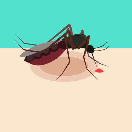 Illustration of a mosquito that bites a person. Mosquito concept. Vettoriali
