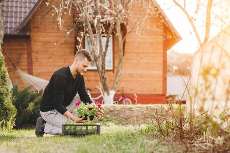 A young man planting petunia flowers in the garden. Gardening, botanical concept. Selective focus. Stock Photo