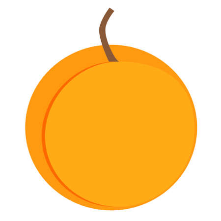 Bright orange peach vector illustration. Summer fruit with brown tail, fruit graphic icon or print, isolated on white background.