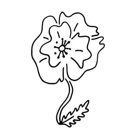 Hand drawn doodle red poppy in blck and white style. Poppy flowers ornamental pattern, red poppy flower composition. Poppy flowers red nature cute blossom