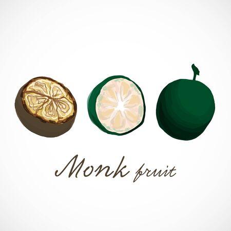 Monk fruit siraitia herb plant vector illustration 版權商用圖片 - 133012893