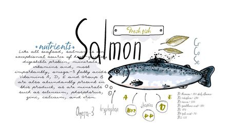 Fish salmon hand drawn set watercolor ink, food vitamin menu restaurant, sketch cartoon vector illustration, text collage