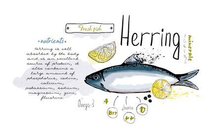 Fish herring hand drawn set watercolor ink, food vitamin menu restaurant, sketch cartoon vector illustration, text collage Ilustrace