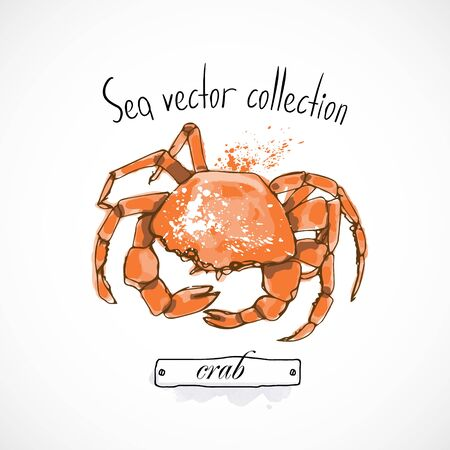 Crab seafood taste for packing or menu watercolor spray seafood poster on white background Ilustração