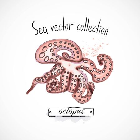 Octopus seafood taste for packing or menu watercolor spray seafood poster on white background Banco de Imagens - 141481156
