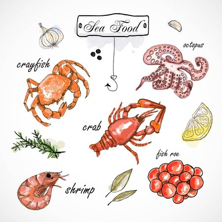 Watercolor set with seafood, oysters, crab, shrimp, lemon and herbs and spices. Hand-drawn on a white background. Ilustração