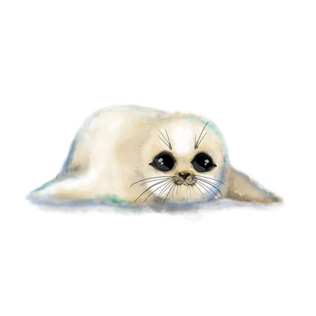 Watercolor seal baby cute white fur hand drawn illustration sweet funny child