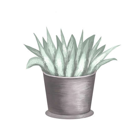 flower potted watercolor hand drawn leaf illustration 免版税图像