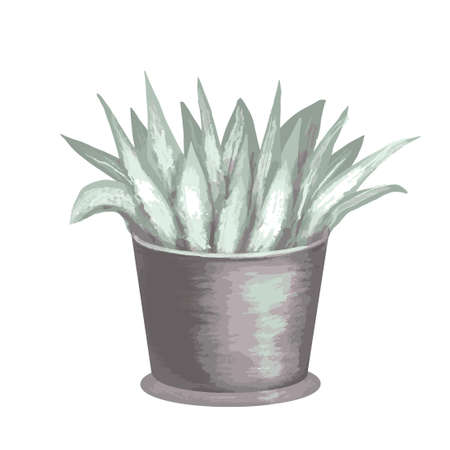 flower potted watercolor leaf hand drawn illustration