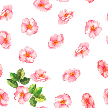 Beautiful  watercolor seamless pattern with tender pink brier flowers and leaves on the white background Illustration